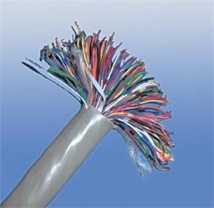 hpvv配线电缆 (1)