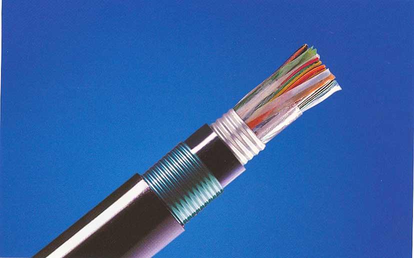 市话电缆ZRC-HYA53 (2)