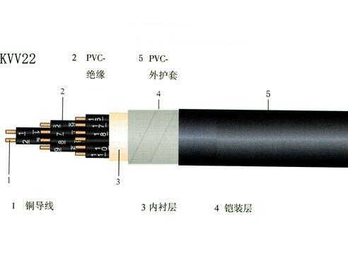 全塑控制电缆 (3)