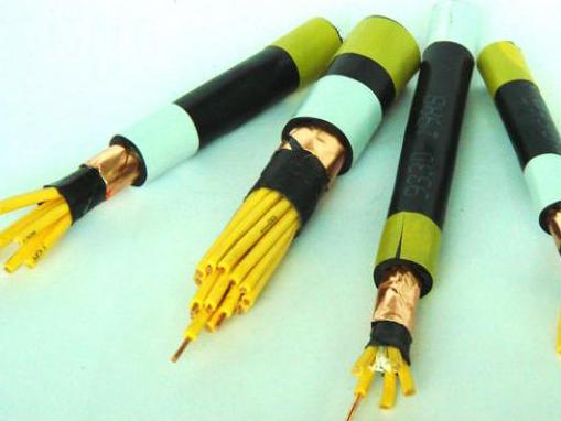 全塑控制电缆 (2)