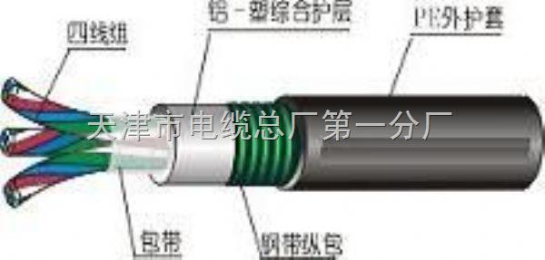 铁路信号电缆 (3)